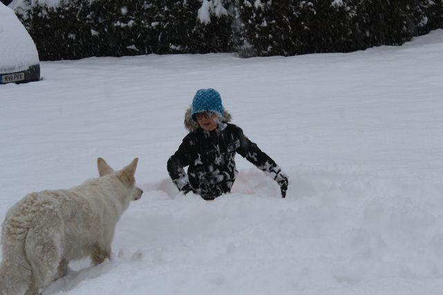 On a presque perdu Jayson dans le neige